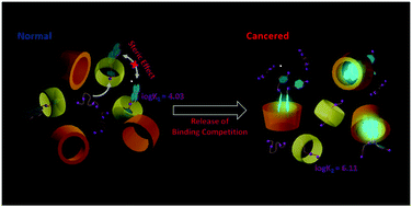 108.Supramolecular Spectral/Visual Detection of Urinary Polyamines through Synergetic / Competitive Complexation with γ-CD and CB[7]